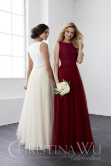 09bf71ae5eb Christina Wu 22805 Lace and Tulle Bridesmaid Gown