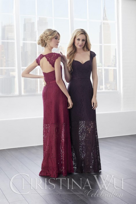 a8b5faf8938 Christina Wu 22819 Cap Sleeve Lace Bridesmaid Gown  French Novelty