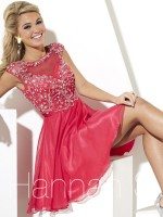 Hannah S 27888 Embroidered Short Party Dress image
