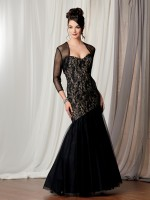 Caterina 3025 Lace Mermaid Formal Dress image