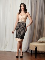 Caterina 3034 Short Lace Mother's Wedding Dress image