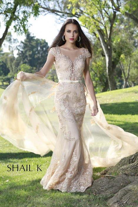 f9f7ef23ca5 Shail K 33924 Sheer Lace Tulle Gown with Overskirt  French Novelty