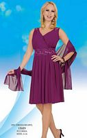 Misty Lane by BenMarc Fuchsia Knee Length Dress with Shawl 13529 image