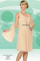 Misty Lane by BenMarc Cream Knee Length Dress and Shawl 13530 image