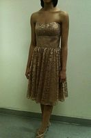 Size 10 Niki Short Gold Glitter Prom Dress 3474 for Alfred Angelo image