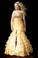 Alyce Prom Ruffle Shimmer Organza Plus Size Dress 56742 image