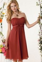 Knee Length Strapless Chiffon Jordan Bridesmaid Dress 635 image