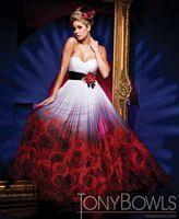 Tony Bowls Evenings Border Rose Print Dress TBE11101 image